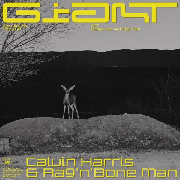 Calvin Harris & Rag'n'Bone Man